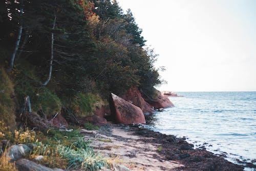 Δωρεάν στοκ φωτογραφιών με ακτή, αυγή, βάρκα