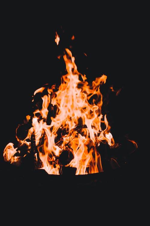 Δωρεάν στοκ φωτογραφιών με ανάβω φωτιά, άνθρακας, γλώσσα