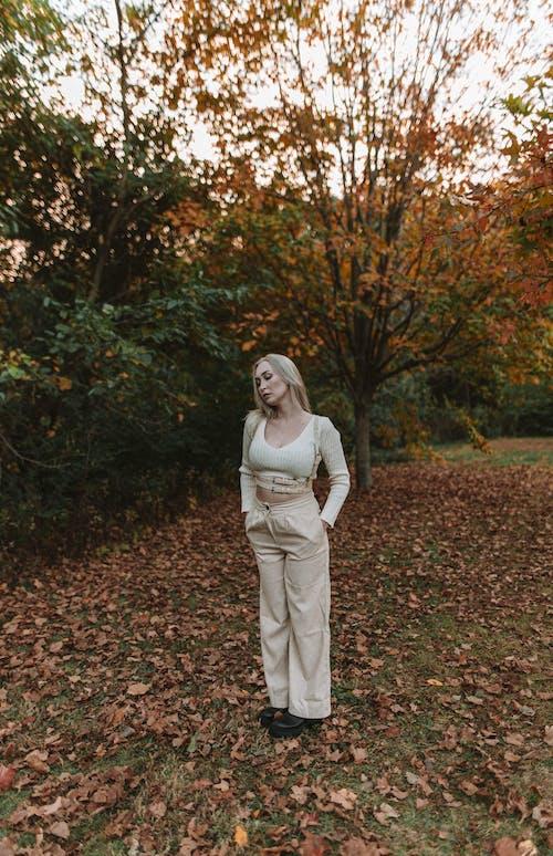 Photos gratuites de adulte, arbre, automne