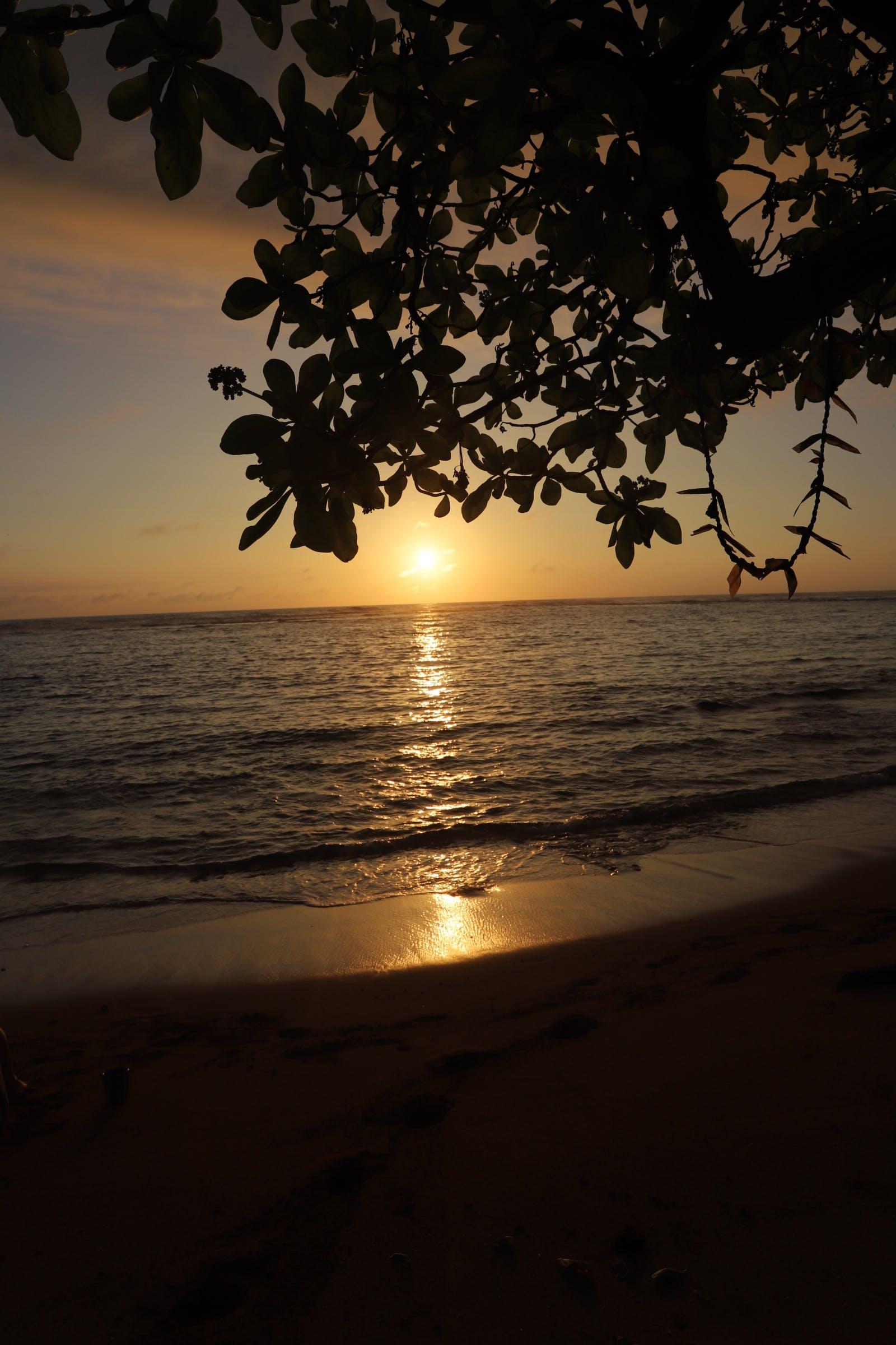 Gratis lagerfoto af kauai, solnedgang