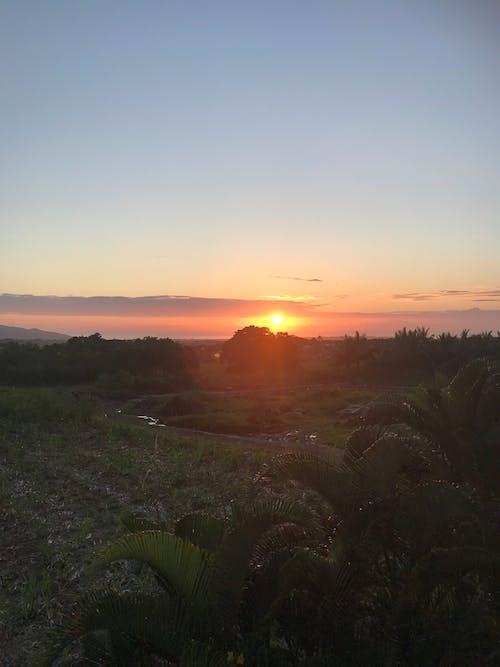 Free stock photo of beautiful nature, early sunrise, sunrise colors