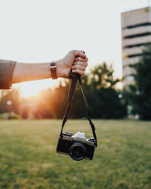 Kostnadsfri bild av del av, fotograf, fotografi