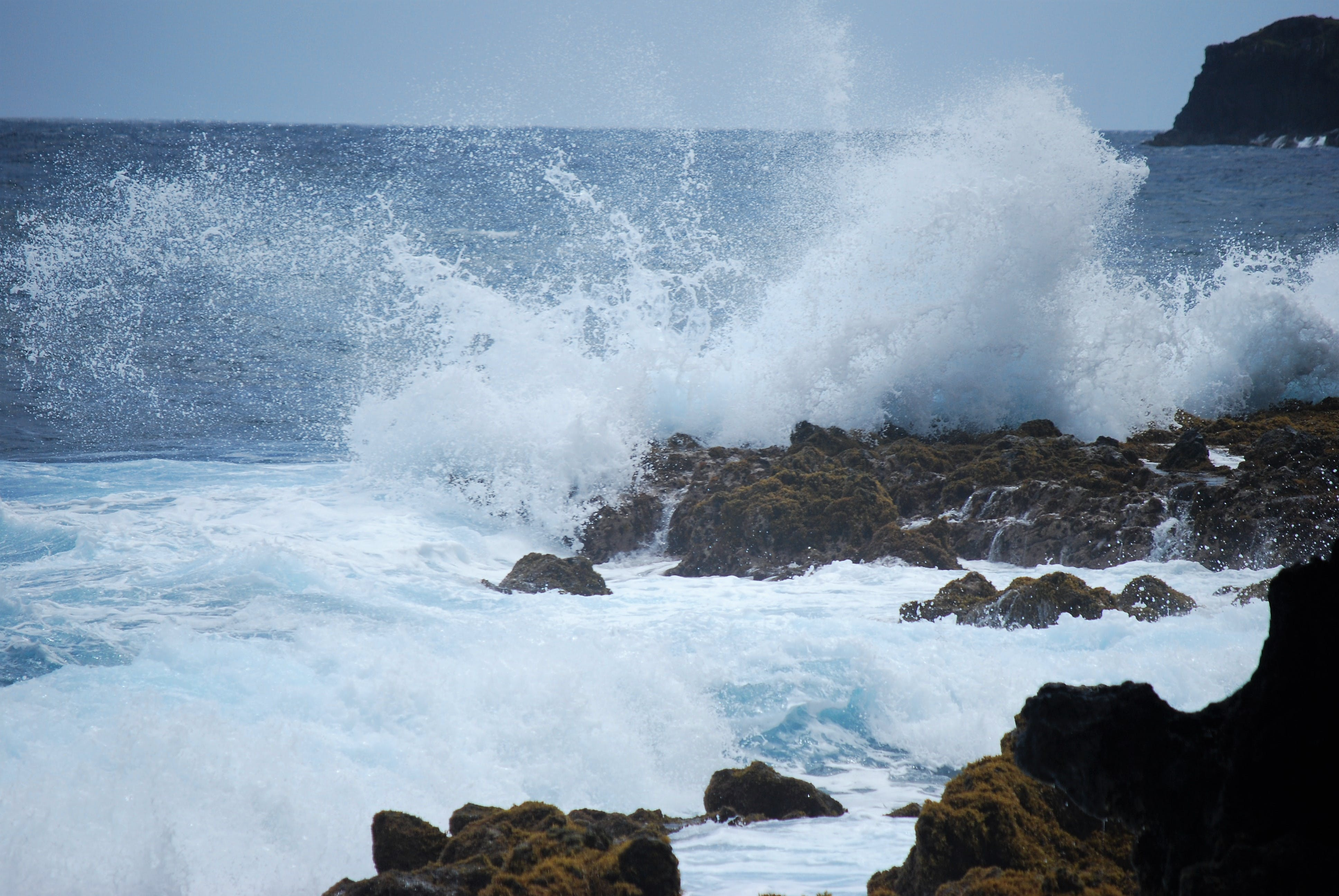 Gratis lagerfoto af bølger, hana hwy, hvide bølger, keanae