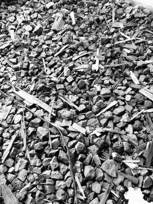 Free stock photo of background, black and white, brick