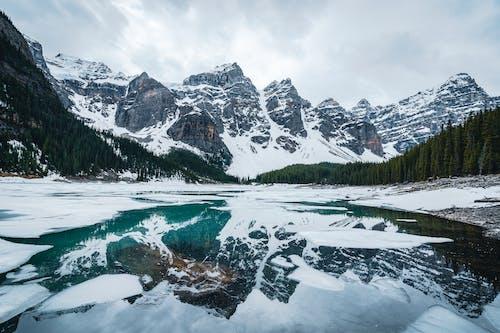Foto profissional grátis de ao ar livre, beleza na natureza, cenário natural
