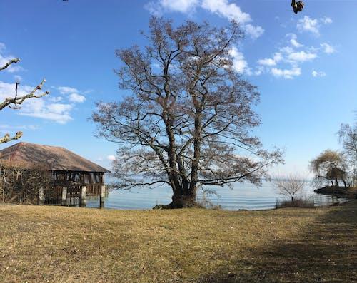 Immagine gratuita di lago, neuchã ¢ tel, puerto_privado