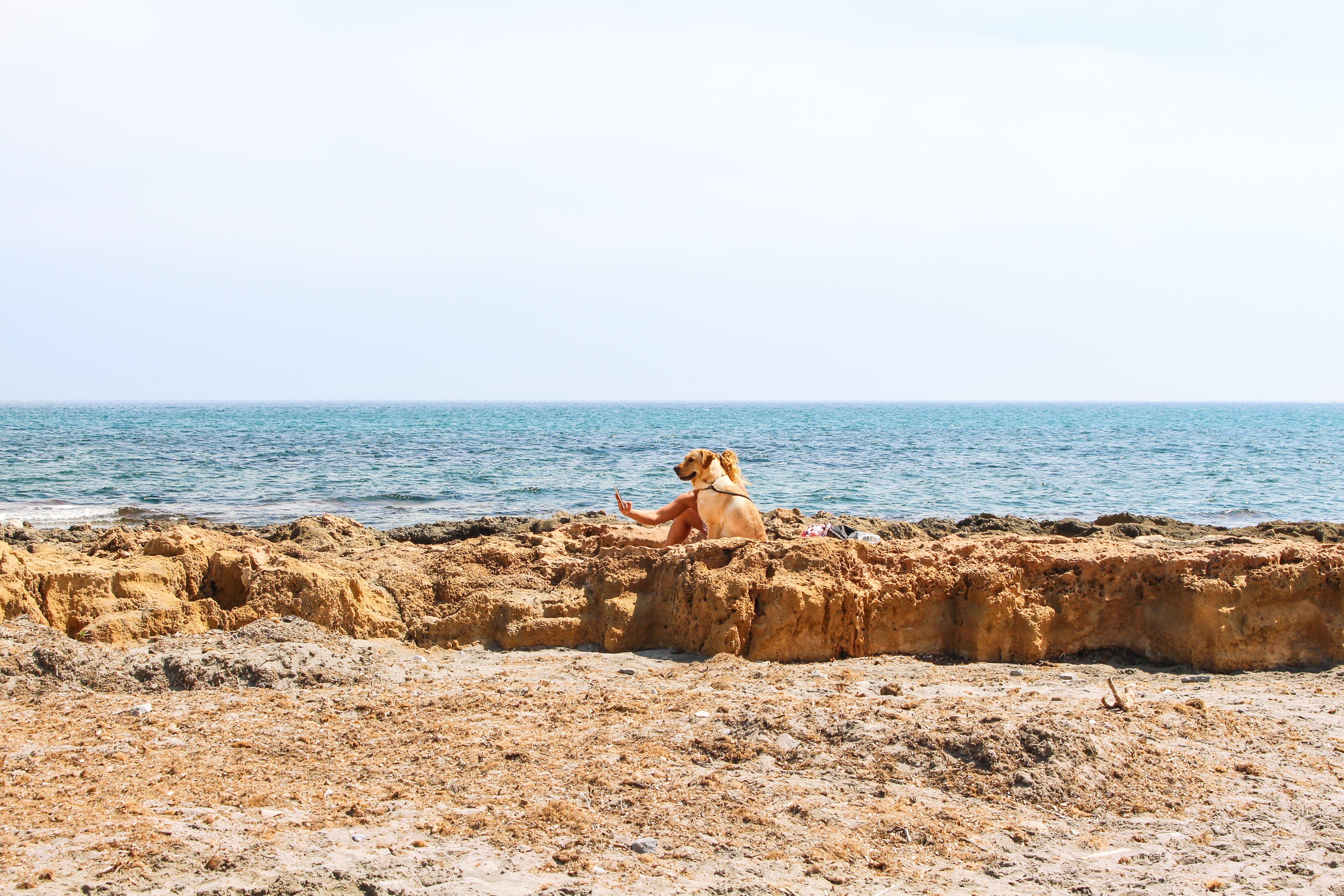 Photo of Open Sea Near Brown Land