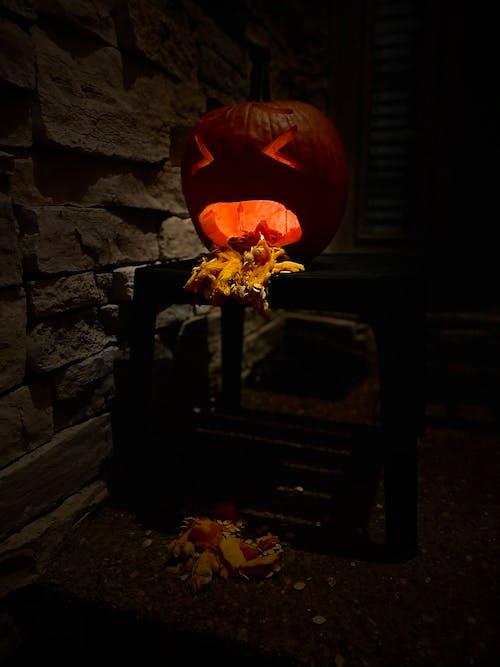 Free stock photo of halloween, jackolantern, pmpkin