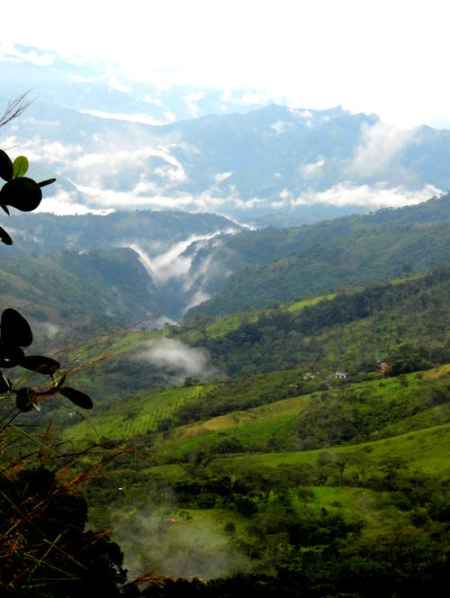 Foto profissional grátis de paisagem nevoenta