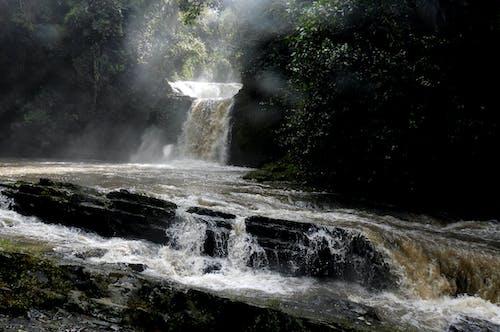 Foto profissional grátis de cachoeira, cascata, rio
