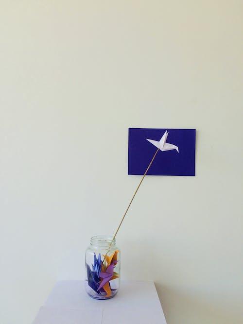 Free stock photo of art, beak, birds