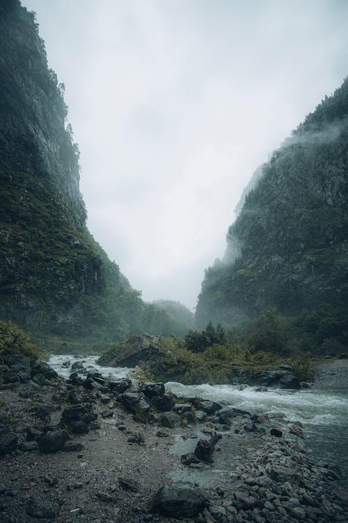 Free stock photo of fog, hike, lake