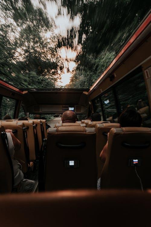 People Sitting Inside Bus