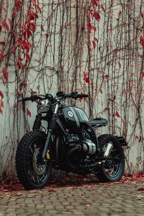 Foto d'estoc gratuïta de arrancador, BMW, bmwr80