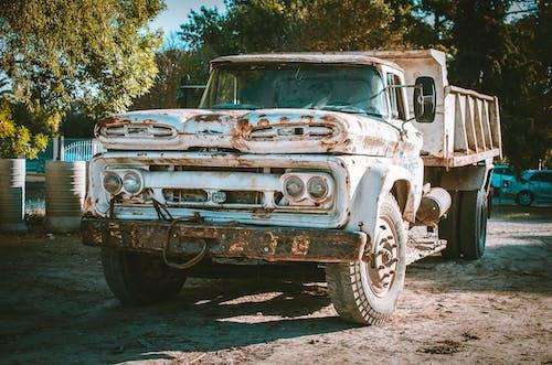 Kostenloses Stock Foto zu autos, bäume, design, fahrzeuge