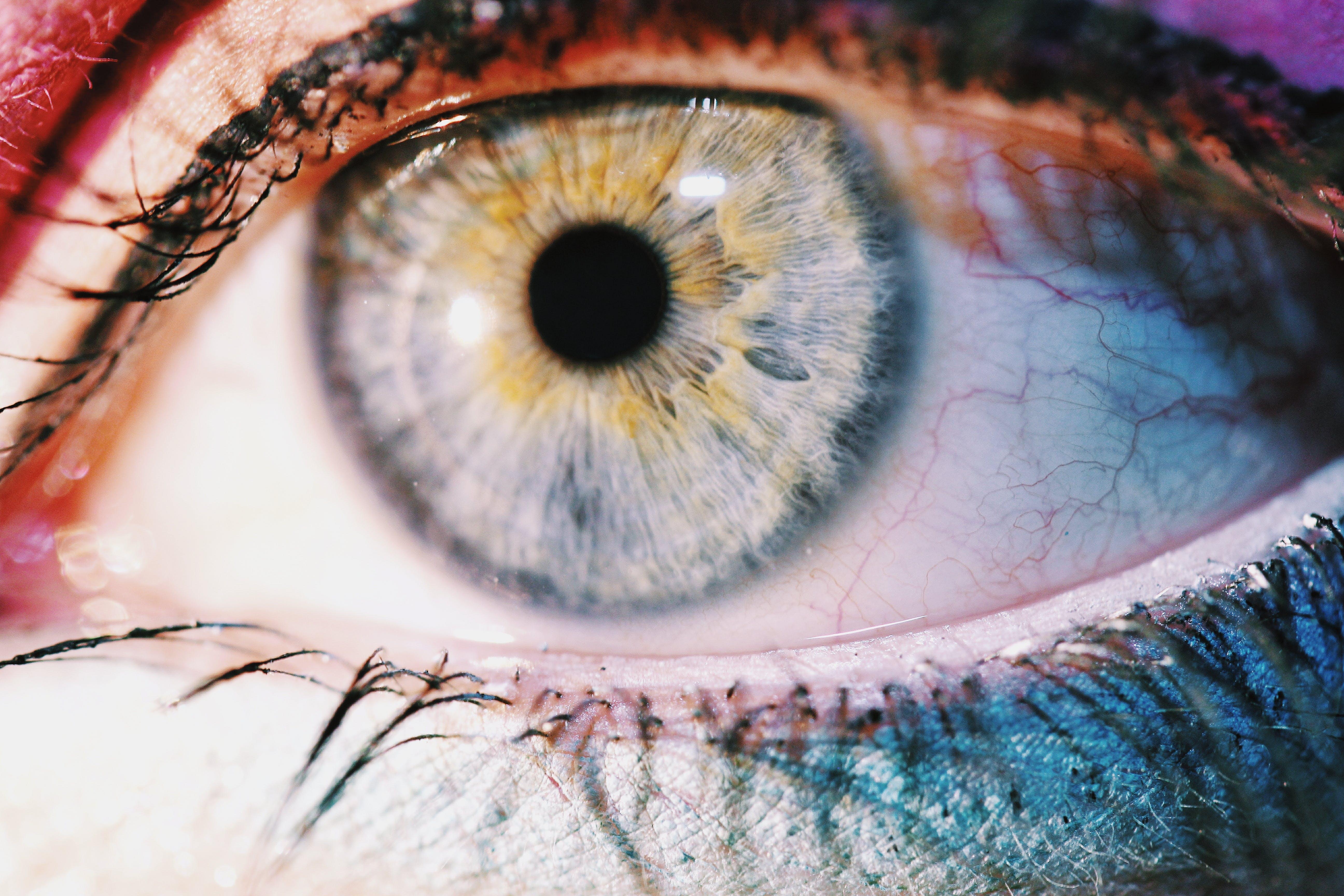 Human's Eye