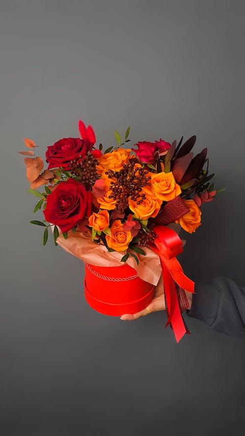 Kostnadsfri bild av apelsin, band, blomma