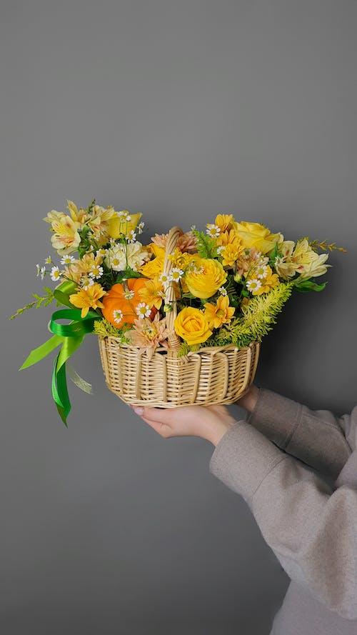 Immagine gratuita di cestino, cesto di fiori, decorazione