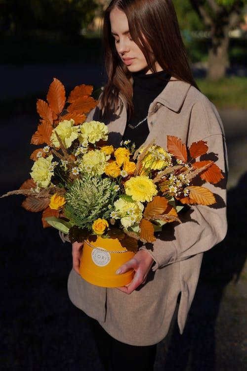 꽃, 노란색, 박스의 무료 스톡 사진