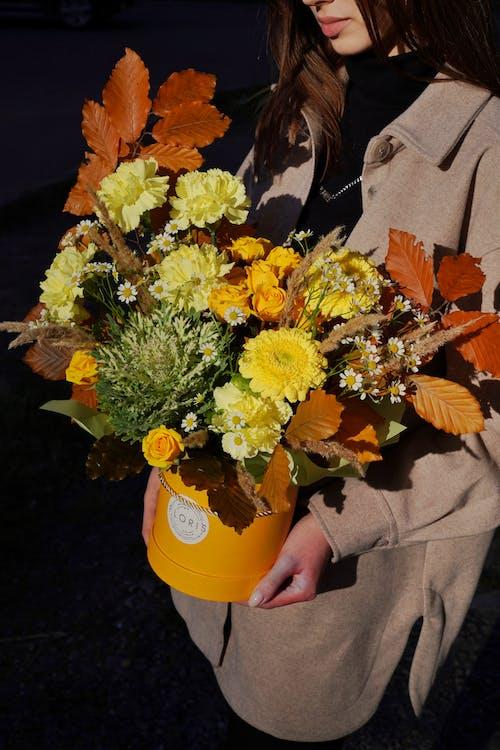 꽃 상자, 꽃다발, 노란색의 무료 스톡 사진