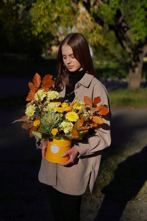 꽃, 꽃 상자, 노란색의 무료 스톡 사진