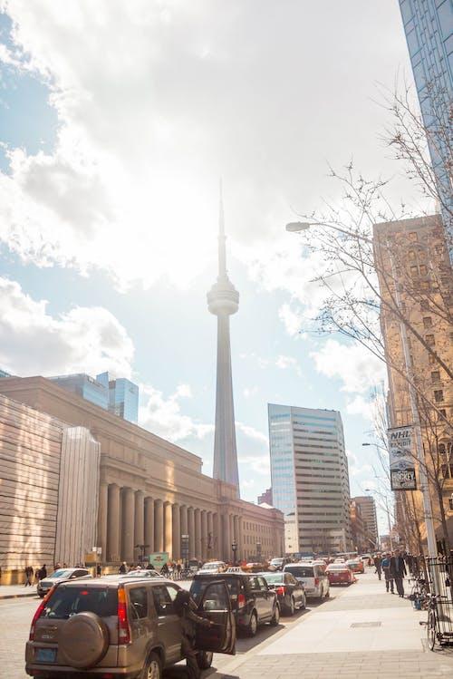 cn, CNタワー, に, オンタリオの無料の写真素材
