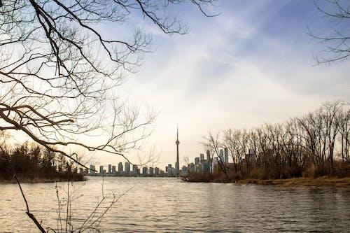 オリンピック島, オンタリオ, カナダ, シティの無料の写真素材