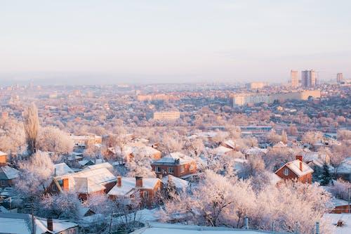 Winter Cityscape at Dawn