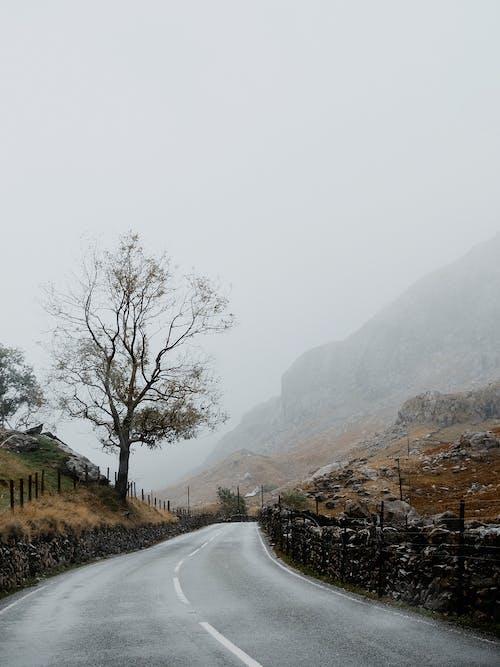 Immagine gratuita di montagna, natura, strada