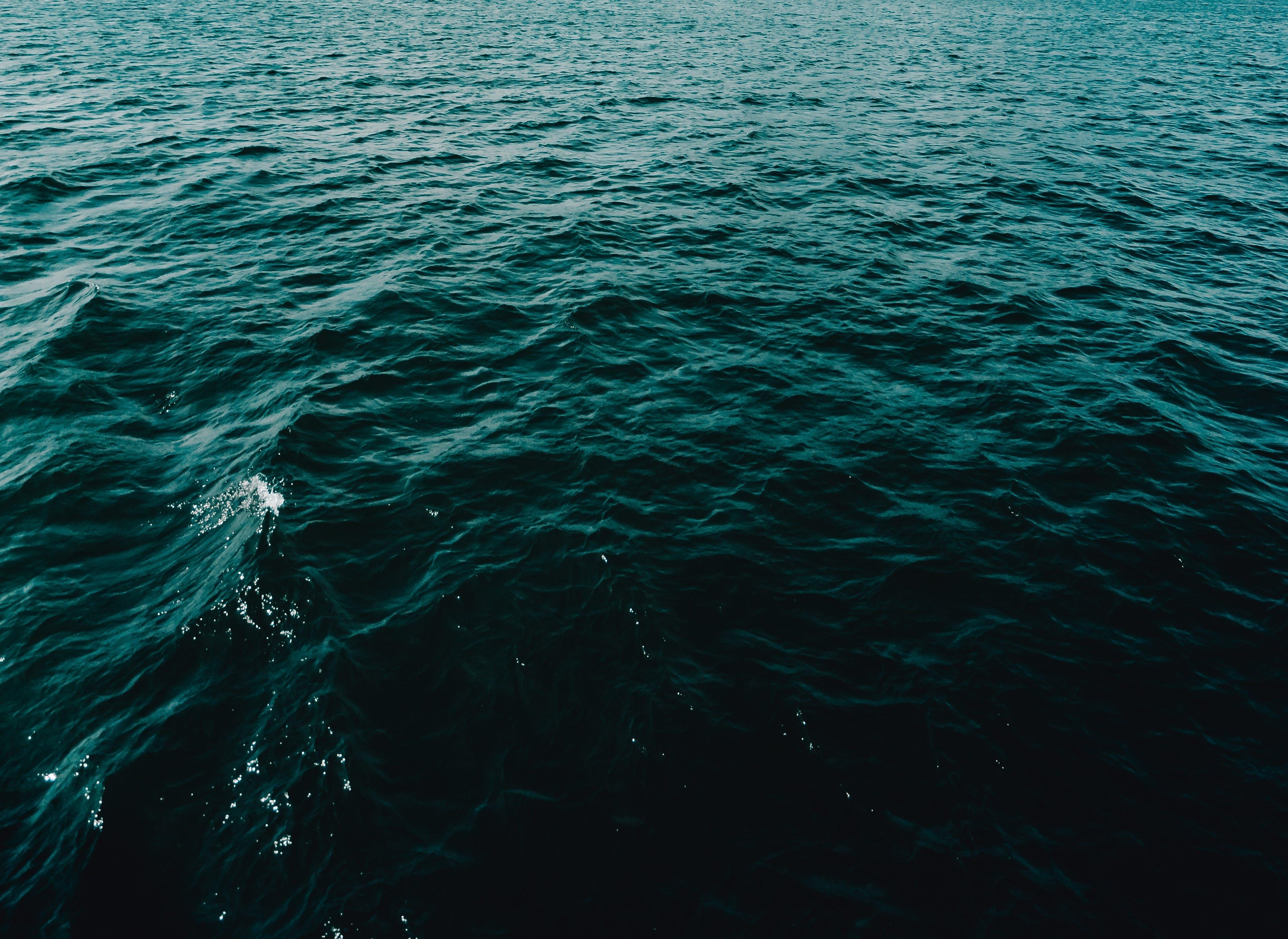 Photo of Body of Water