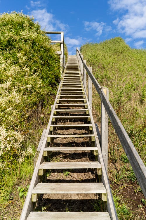 Brown Wooden Staircase on Green Grass Field