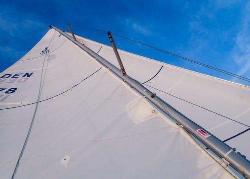 Free stock photo of j80, sail, sailboat