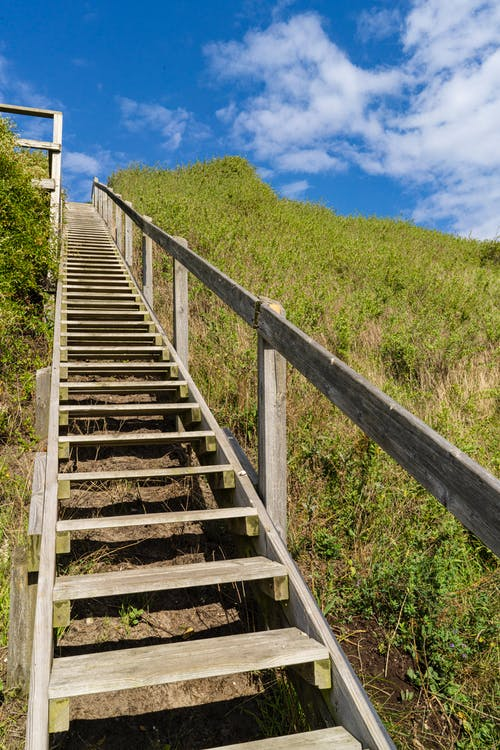 Free stock photo of blue sky, green grass, staircase