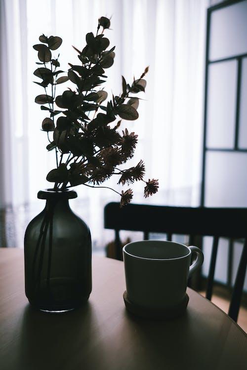 Gratis lagerfoto af blomst, bord, interiør