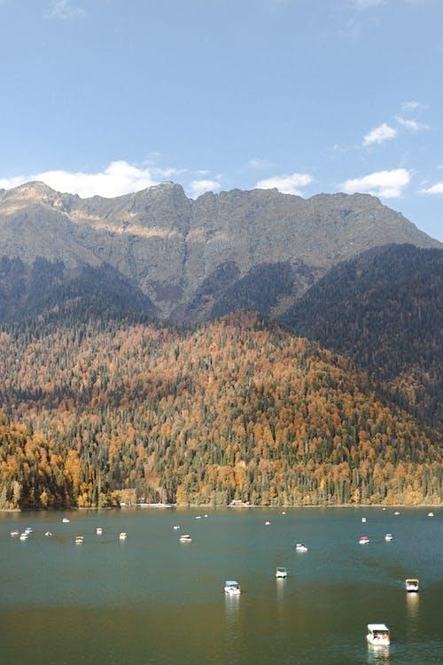 Immagine gratuita di arrivo, autunno, azzurro