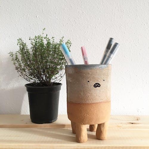 Základová fotografie zdarma na téma hrnec, hrnková rostlina, kancelářské potřeby, keramický