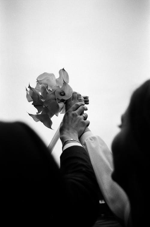 二人, 人間の手, 屋外の無料の写真素材
