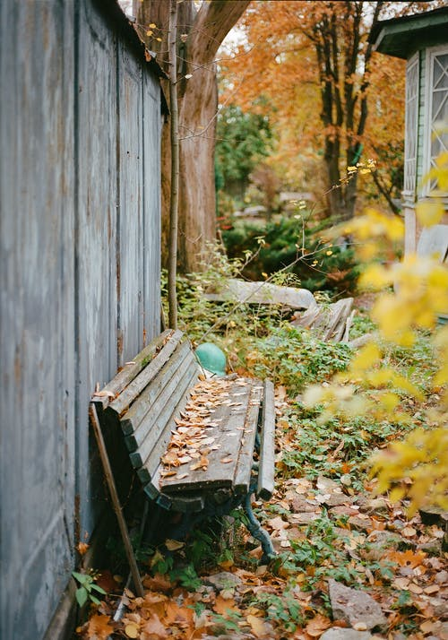 Old Neglected Bench Standing By Wooden Shabby Fence
