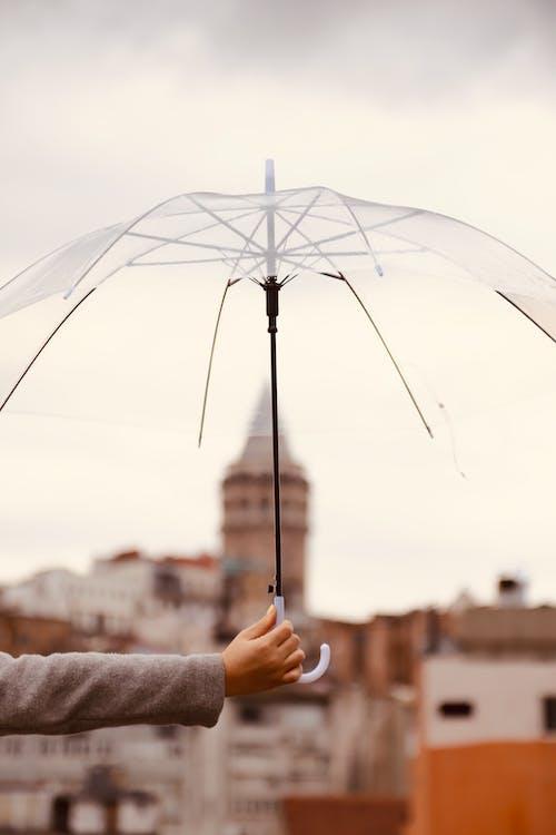 Unrecognizable Hand Holding Transparent Umbrella