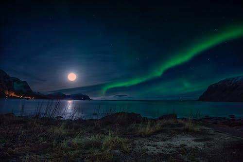 Gratis arkivbilde med arktis, arktisk landskap, arktisk natur