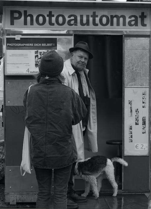 Fotos de stock gratuitas de blanco y negro, gente, perro