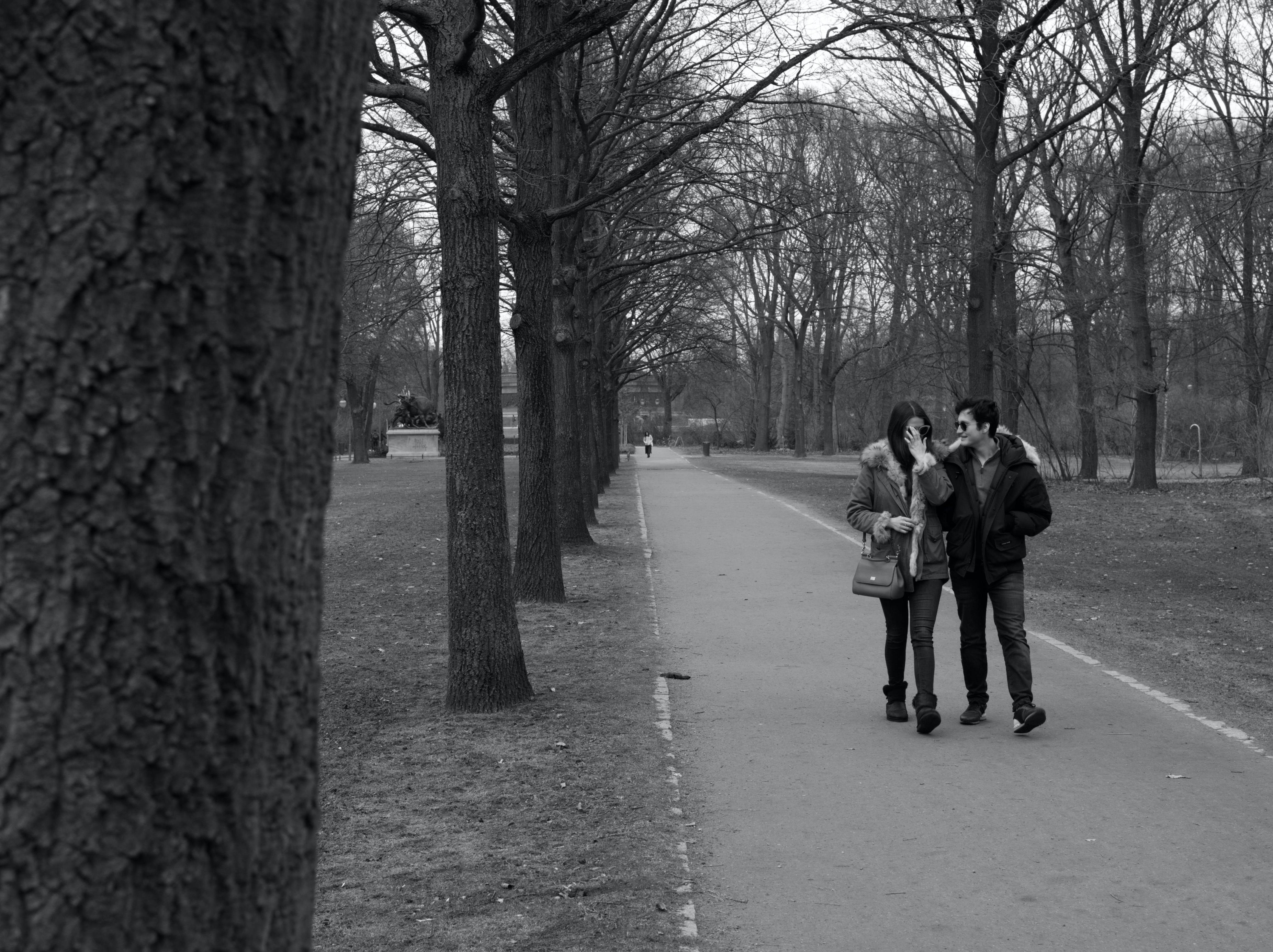 Free stock photo of couple, people, walking, park