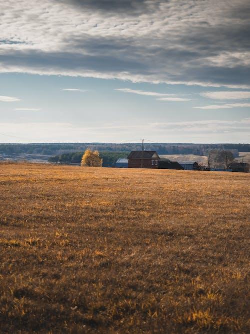 Ảnh lưu trữ miễn phí về bầu trời, căn nhà, cánh đồng