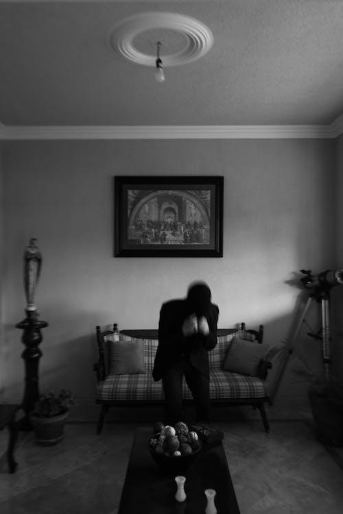 Безкоштовне стокове фото на тему «бояться, Вітальня, всередині»