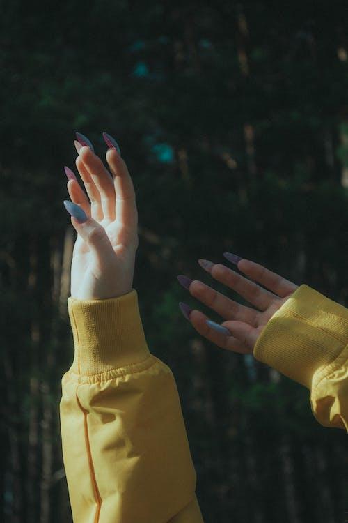 Ảnh lưu trữ miễn phí về áo mưa, bàn tay con người, màu vàng