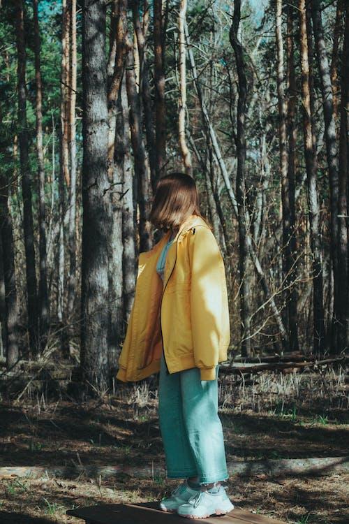 10대, 갈색 머리, 나무의 무료 스톡 사진