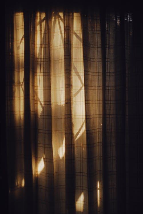 Безкоштовне стокове фото на тему «Windows, Вибірковий фокус, вікно»