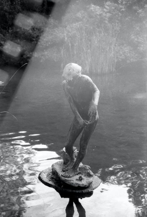 Foto profissional grátis de água parada, ao ar livre, apressa
