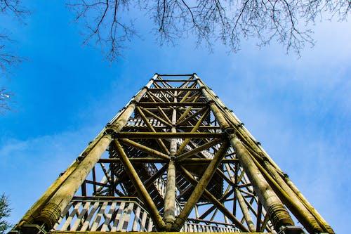 Ilmainen kuvapankkikuva tunnisteilla apeldoorn, puinen torni, torni, viewtower