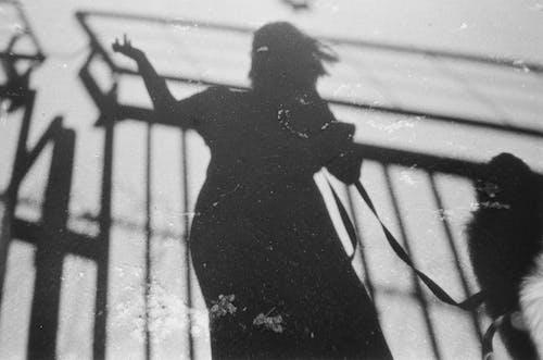 Foto stok gratis bayangan, di luar rumah, kekang